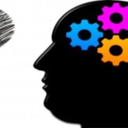 La obesidad afecta a la memoria y al aprendizaje